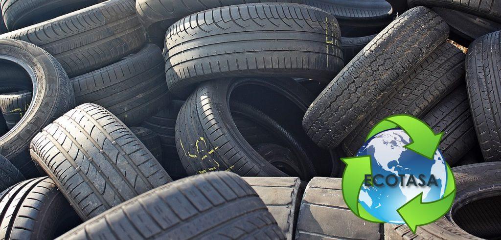 ecotasa neumático